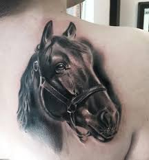 tattoo pictures horse 80 best horse tattoo designs meanings natural powerful 2018