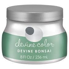 best 25 valspar bonsai ideas on pinterest valspar paint colors