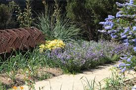 california native plant gardens garden share network theodore payne foundation