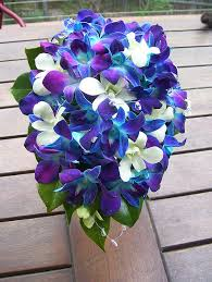 blue and purple orchids cascading lilies and orchids bouquet wedding flower