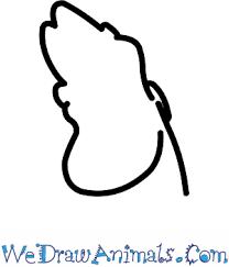 draw sebastian mermaid