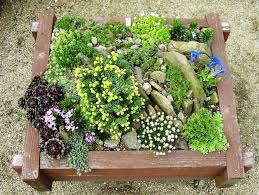 70 best inspired rock gardens images on pinterest gardening