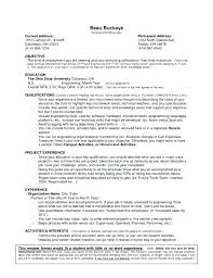 sample resume without objective u2013 topshoppingnetwork com