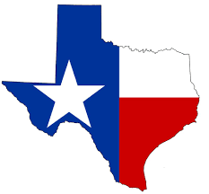 correctional officer requirements for texas correctional officer