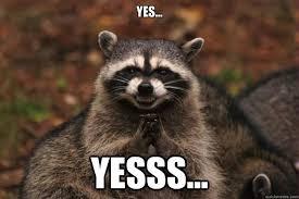 Yesss Meme - yes yesss evil plotting raccoon quickmeme