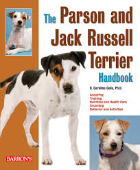 the parson and jack russell terrier handbook barron u0027s pet