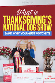 thanksgiving show 2017 4 reasons why you should it