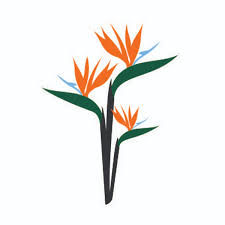 birds of paradise flower birds of paradise svg cuttable design