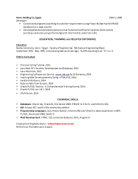 Sample Resume For Oracle Pl Sql Developer by Fashion Intern Cover Letter Fashion Stylist Internship Cover