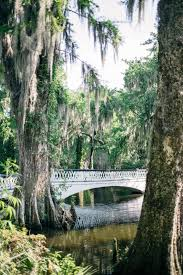 South Carolina how to travel images Magnolia plantation charleston south carolina travel jpg