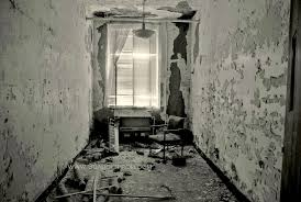 abandoned home for the abandoned forest haven asylum sometimes