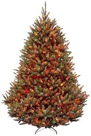fraser fir tree national tree 7 5 foot fraser fir tree with 1000