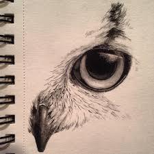 25 beautiful owl sketch ideas on pinterest owl drawings owl