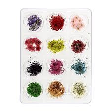 amazon com mash nail art real dried flower kit set nail art