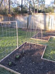 back to the land mama project 6 bean tepees and trellises