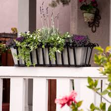 Porch Rail Flower Boxes by Shop Window Boxes Planter Boxes Flower Boxes