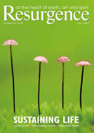 The Language Of Flowers Resurgence U2022 Article The Language Of Flowers
