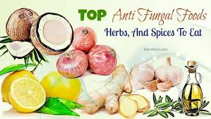 top 33 anti fungal foods herbs and spices to eat
