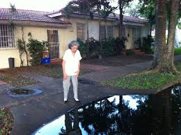 my grandmother called the city of miami to report a drainage