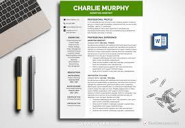 resume template professional 2 resume template murphy bestresumes