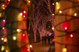 garden lights at altanta botanical gardens the backstage beat
