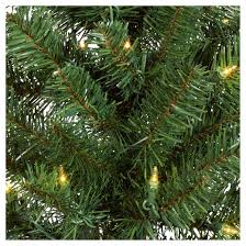 3pk 2ft prelit artificial pathway trees alberta spruce