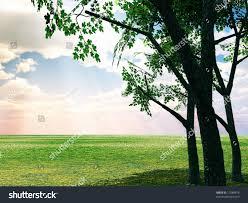 beautiful spring scenery stock illustration 12588478 shutterstock