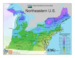 Map Of Northeast United States by Woody Plants Database