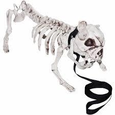 Horse Skeleton Halloween Online Get Cheap Women Skeleton Halloween Costumes Aliexpress Com
