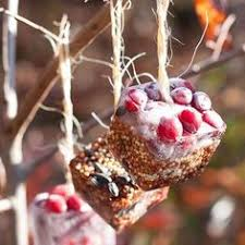 how to make birdseed ornaments bird seed ornaments ornament and