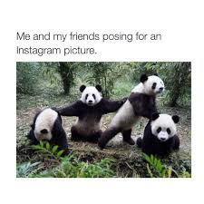 Funny Best Friends Memes - best friend memes popsugar tech