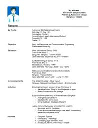 Example Of A Profile In A Resume by Download Example Of A Resume With No Work Experience