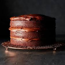 double chocolate layer cake williams sonoma