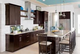 Dark Shaker Kitchen Cabinets Kitchen Gorgeous Shaker Kitchen Decoration With Dark Brown Wood