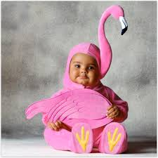 halloween costumes babies little flamingo costume cute baby costume pinterest baby