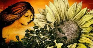 10 amazing benefits of sunflower seeds