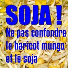 comment cuisiner les pousses de soja attention la pousse de soja est en fait une pousse de haricot