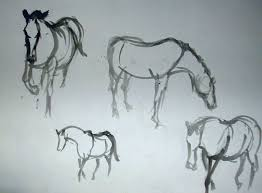 horses sketches brush with ink douglas simpson