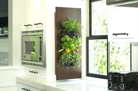 indoor wall garden indoor wall garden indoor wall herb garden diy flyingwithemilio com