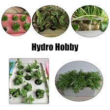 Indoor Vegetable Garden Kit by Aliexpress Com Buy 12 Holes Plant Site Hydroponic Garden Pots