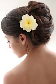 flower hair clip 3 plumeria hawaiian white yellow flower hair clip