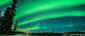 aurora borealis northern lights tours yukon christmas aurora package nature tours of yukon