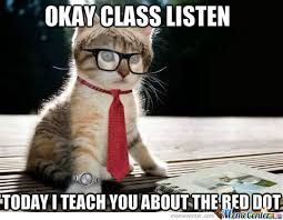 Meme Teacher - teacher cat memes best collection of funny teacher cat pictures