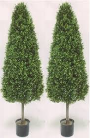 two 5 foot artificial cedar cypress cone tower topiary trees