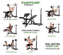 tunturi wb50 mid width weight bench tunturi ag17tswb5000 ipponsport