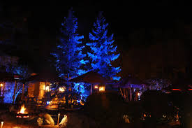 Rgb Landscape Lights Jrd Landscape Lighting Design Inc