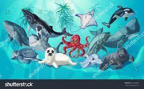 cartoon sea ocean life template underwater stock vector 613960925