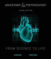 Principles Of Anatomy And Physiology Ebook Wiley Anatomy And Physiology From Science To Life 3rd Edition