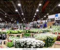 new covent garden market wholesale stock photos u0026 new covent