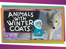animals with winter coats youtube